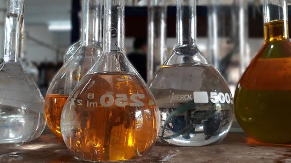 Los biocombustibles podrían substituir a los combustibles fósiles dentro de unos años